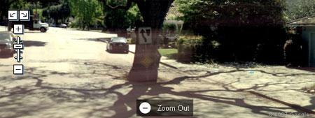 treestreet.jpg