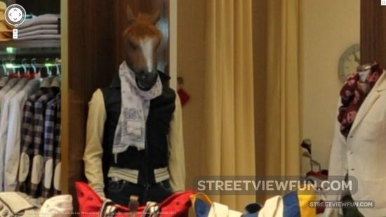 horseboyisbackitaly2