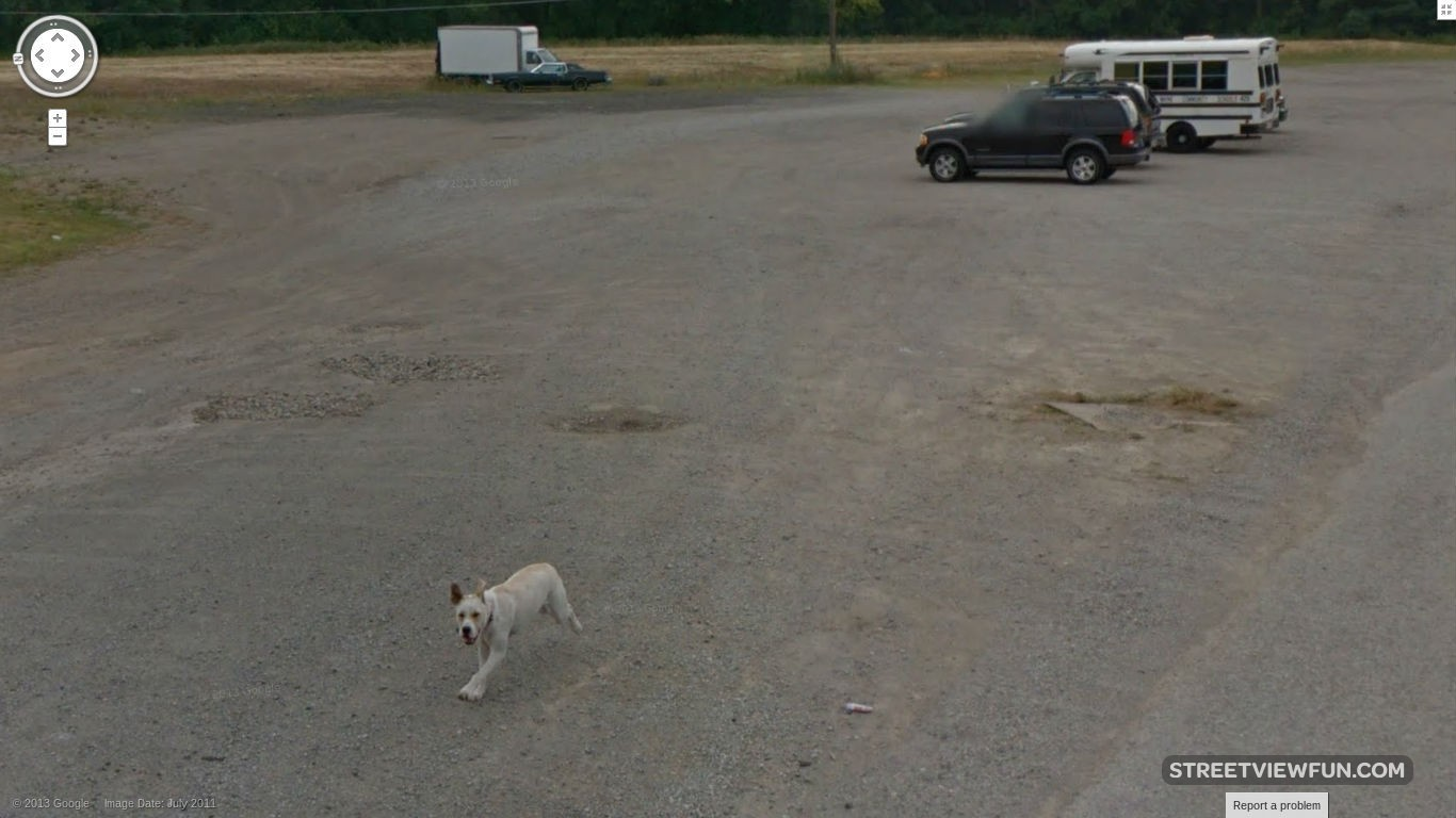 dog-chasing-away-google-street-view
