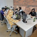 giraffe-office