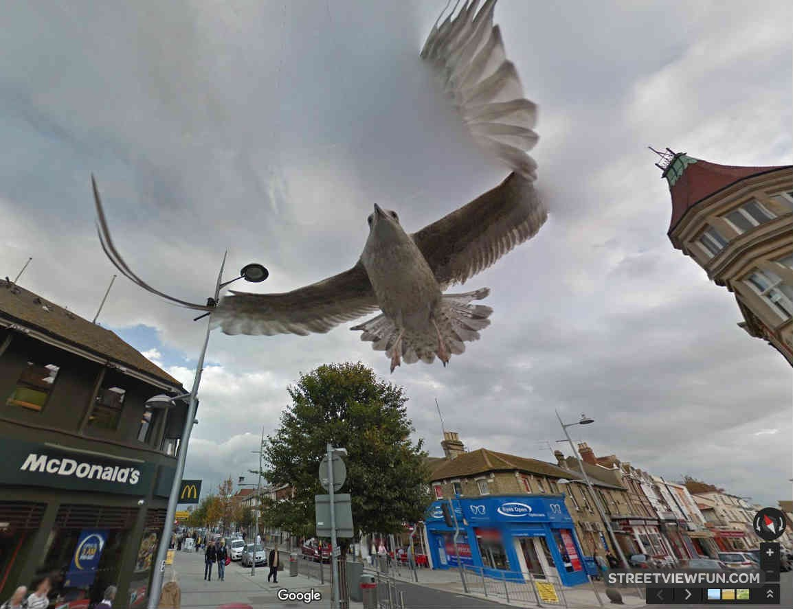 Streetviewfun This Is How You Photobomb Google Street View