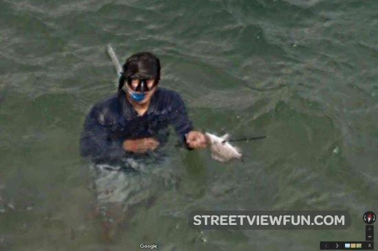 diver-fish2