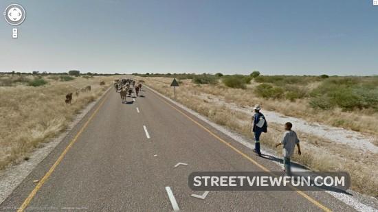movinginbotswana0