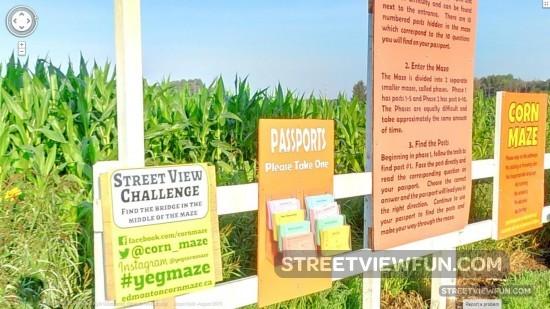 corn-maze-google-street-view-challenge-bridge