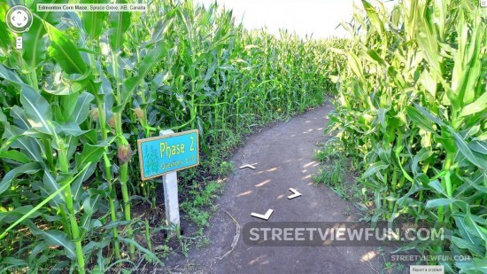corn-maze-google-street-view-challenge-question