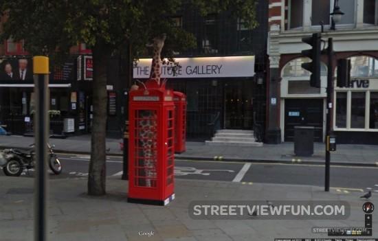 giraffe-telephone-box