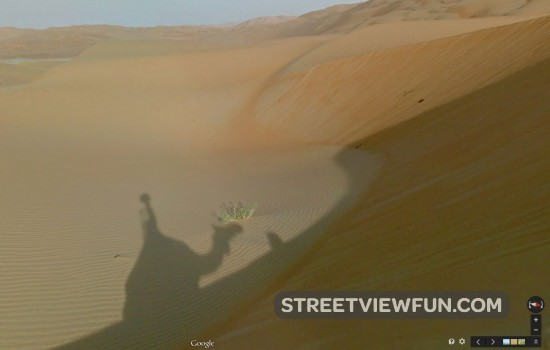 google-camel-street-view