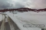 Norwegian moose staring at Google Street View