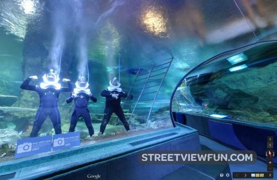 underwater-world