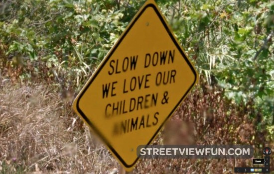 slow-down-sign-funny